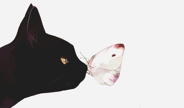 我们搜集了十首关于小猫咪的诗——向喵星人致敬